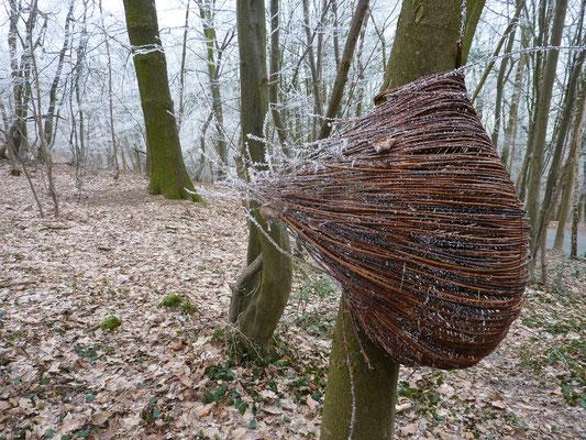 """""""Panier-l'arbre"""", osier brut, 2010, Erezée"""