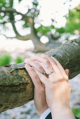 Detailshooting  Bilder von den Ringen