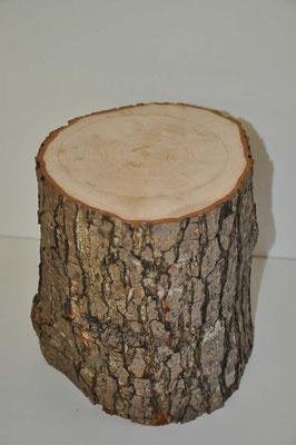 Urne aus Baumstamm
