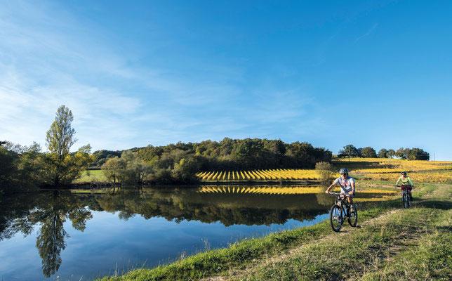 ciclismo de montaña en vic-bilh/vinedo Madiran