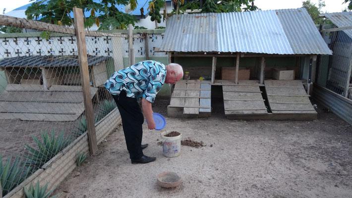 Die Missionsstation von Pfarrer Renner - heute gibt es Terminten, eine Delikatesse für die Haustiere