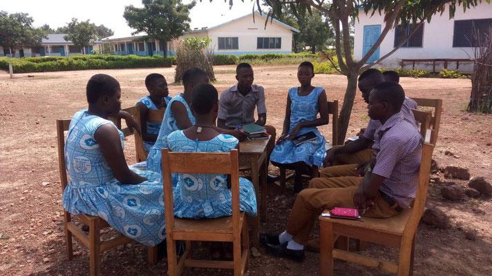 Lernen in Kleingruppen unter Bäumen
