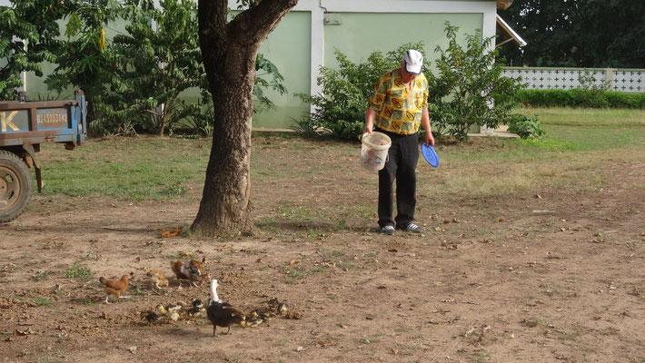 Die Missionsstation von Pfarrer Renner - Pfarrer Renner beim Füttern seiner Tiere