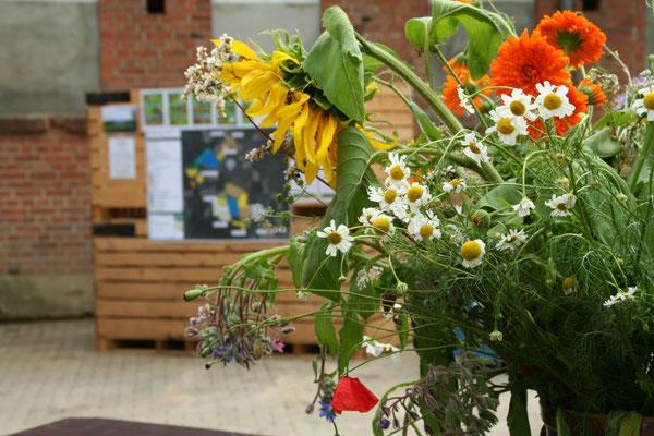 Biodiversität - auch bei uns auf dem Hof!