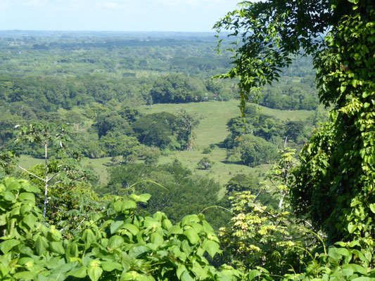 Honduras Natur 1