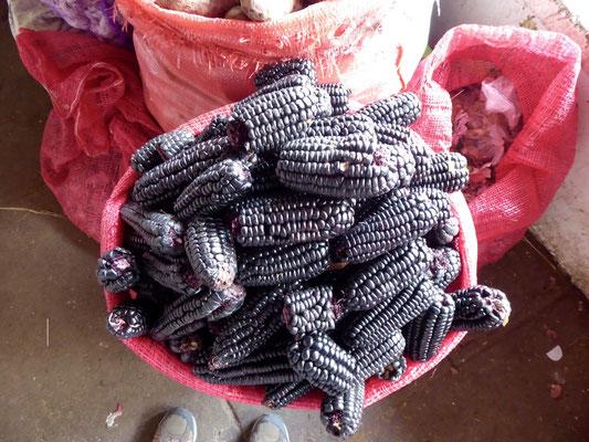 sondern auch schwarzen Mais---