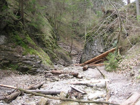 erste Holzstiegen