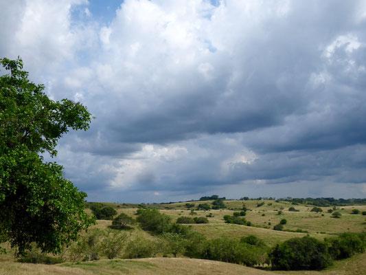Unterwegs: Auf dem Weg nach Magangué