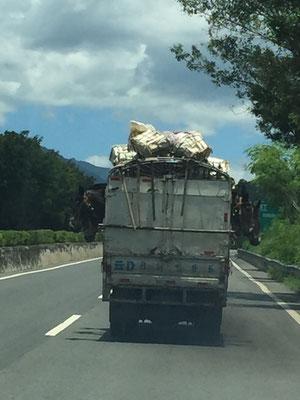 Chinesischer Pferdetransport