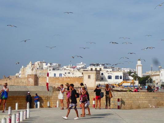 Blick auf die Altstadt von Essaouira