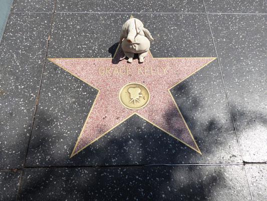 Heilige Pilgerstätte für Saltim Bocca: Grace Kelly's Stern auf dem Walk of Fame