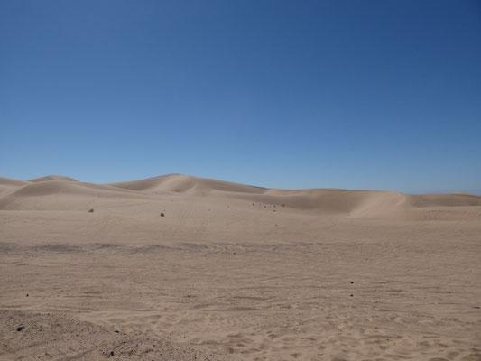 Endlose Sanddünen (Imperial Sand Dunes)