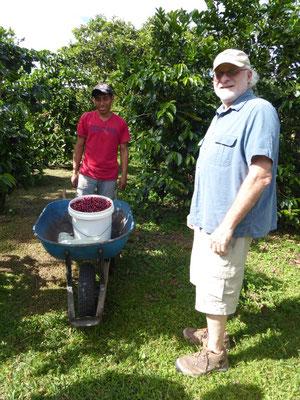 Richard Lipner und einer seiner Mitarbeiter mit frisch geernteten Kaffeekirschen