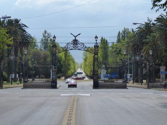 Mendoza, die grüne Stadt. Mehr Bilder gibt es nicht. Viel zu heiß.