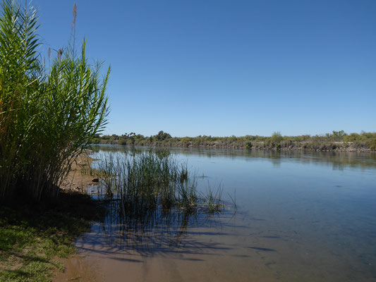 Zwei Tage nichts machen am Colorado River