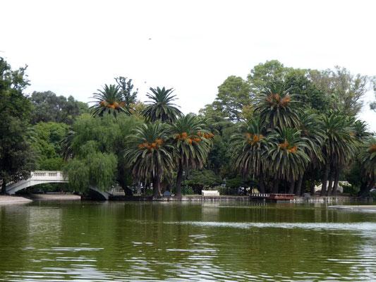 Im Parque de la Independencia