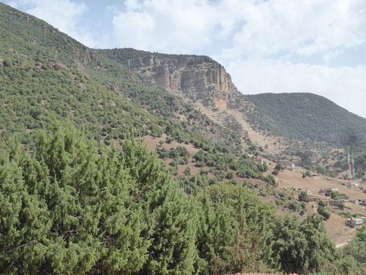 Wälder und Felsen im Mittleren Atlas