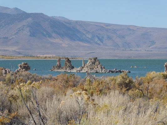 Mono Lake: Alles, was hier rausschaut...