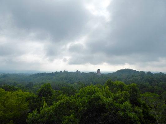 Im Morgennebel: Tikal ist sehr weitläufig.