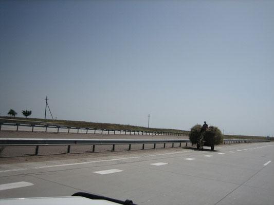 Geisterfahrer auf der Autobahn