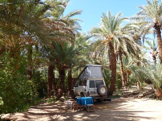 Idyllisches Nachtlager unter Dattelpalmen und Granatapfelbäumen