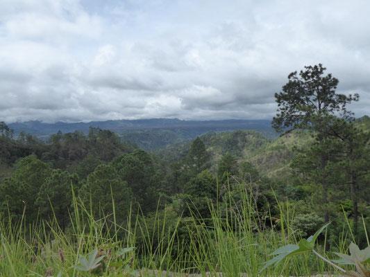 Honduras Natur 5