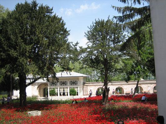 Tulpenmeer im Topkapi Serail