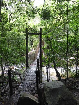 Wanderung im Nationalpark Rincón de la Vieja (natürlich auch ein Vulkan)