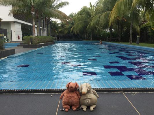 Sauwohl fühlt man sich am Pool