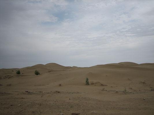 Durch die Karakum-Wüste