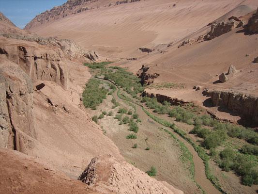 Fruchtbares Tal in der Wüste