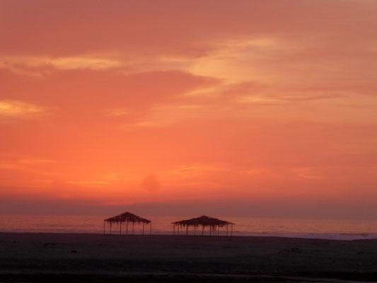 Sonnenuntergang im Vogelparadies