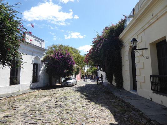 Schöne Gasse in der kolonialen Altstadt