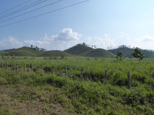 Honduras Natur 4