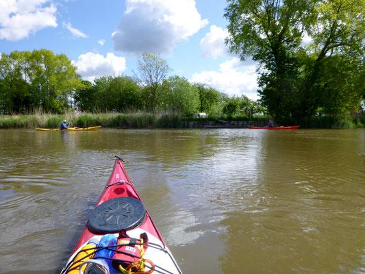 grünes Ufer und ruhiger Fluss