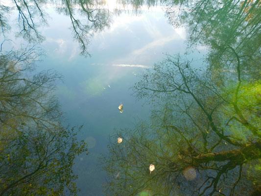 Ein Blick in die Quelle - unendliche Tiefen...