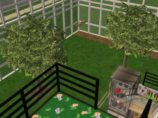 höhe 1.Etage Blick in den Innengarten ( Gewächshaus )