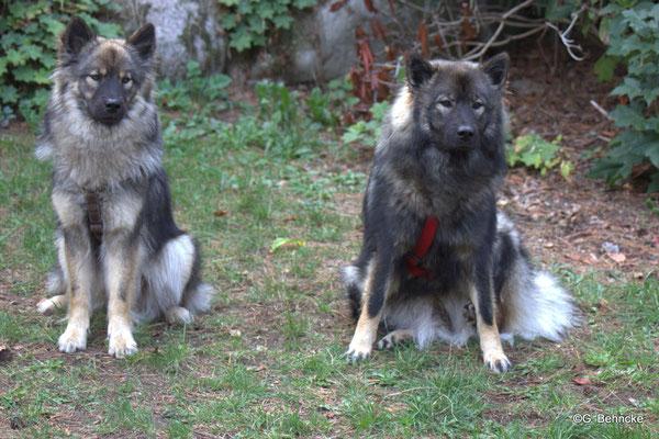Aira und Janne