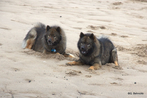 Sanny(li.) und Bonny(re.)