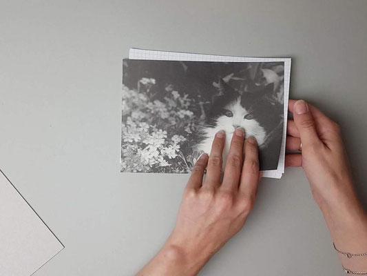 Umschlag und Blätter auf gleiche Größe zuschneiden.