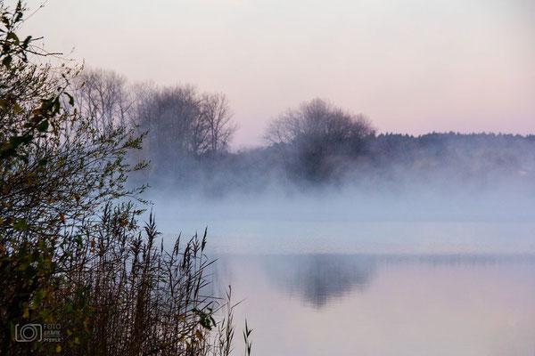Seeoner See mit Nebel