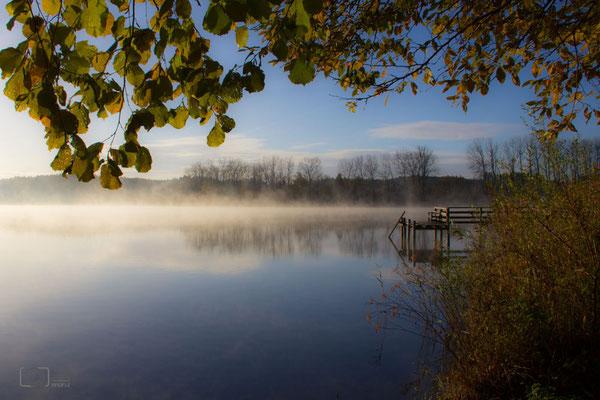Nebel auf dem Seeoner See