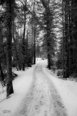Inzell Moor-Erlebnispfad