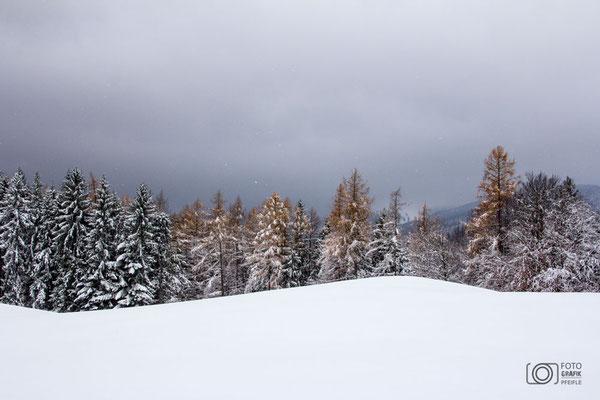 Winter auf der Fürmann Alm