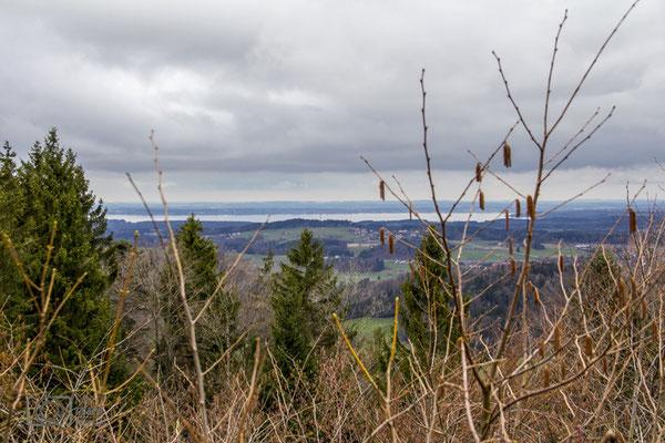 Panoramablick Chiemsee von Maria Eck