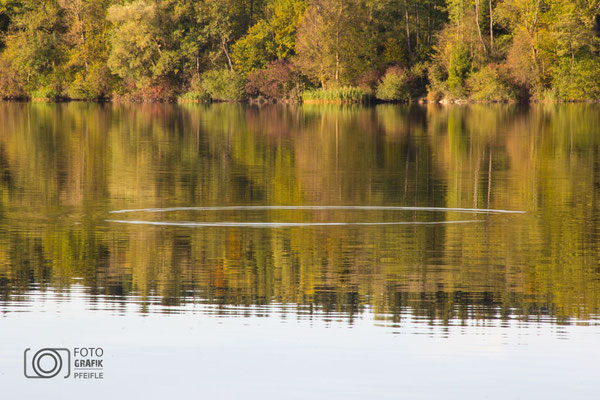 Abtsdorfer See im Herbst