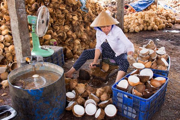 Verarbeitung der Kokosnüsse