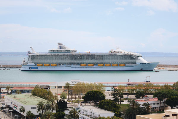 Die Symphony of the Seas in Palma / ©Martin Melzer
