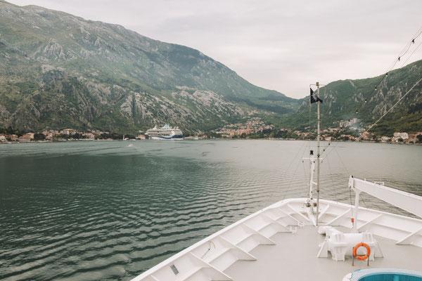 Blick vom Schiff auf die Bucht von Kotor