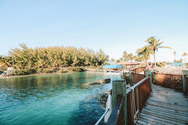 Naturreservat für Delfine auf Blue Lagoon Island